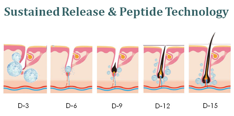 Sustained Release & Peptide Technology